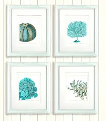 wall ideas cottage chic set of beach wall art art sea shells