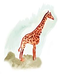 giraffes u0027 long nerves make them slow to respond visual science