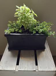 Window Sill Herb Garden Designs Secrets To A Thriving Indoor Herb Garden