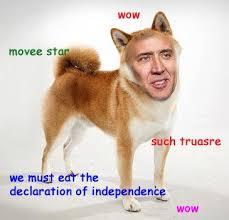 Funniest Doge Meme - nic doge doge meme and captions