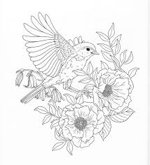 harmony of nature coloring book pg 26 color pages