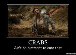 Fear Meme - crabs fear the walking dead twd pinterest dead memes and memes