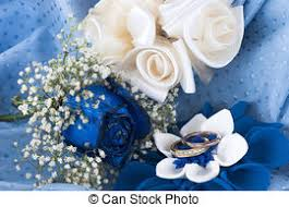 white and blue roses blue roses stock photo images 39 869 blue roses royalty free
