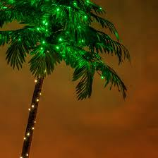 lighted palm trees 7 led curved lighted palm tree