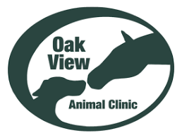 Red Barn Vet Decatur In Oak View Animal Clinic Veterinarian In Pea Ridge Ar Usa Home