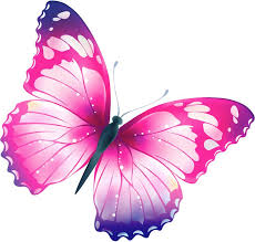 pink butterfly clipart png clipartxtras