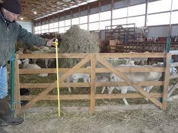 Small Barns by Sheep Barn Interior Design Wooden Panels Cornell Small Farms