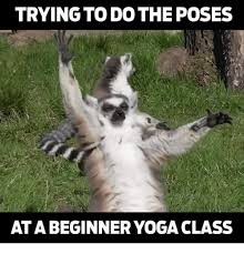 Yoga Meme - trying to do the poses ata beginner yoga class meme on me me