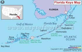 map usa florida florida map map of florida