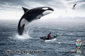 mad croc print advert by dim propaganda whale ads of the world