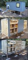 Backyard Chicken Coup by 300 Best The Barn The Chicken Coop U0026 More Images On Pinterest
