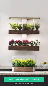 Wall Mounted Herb Garden by