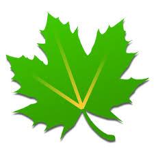 greenfy apk greenify donate v3 9 5 build 39500 cracked apk4free