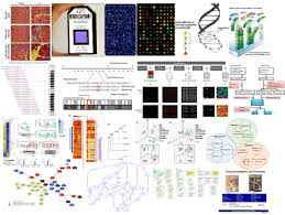big data science and its applications in healthcare and medical