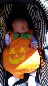 happy halloween share photos of your little ones and furry