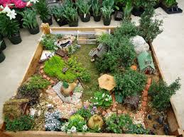 Miniature by Miniature Gardening Town And Country Nurseries