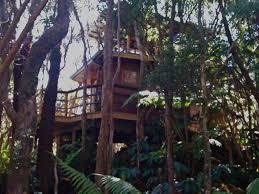 Hawaii exotic travelers images Exotic treehouse at kilauea volcano homeaway volcano jpg