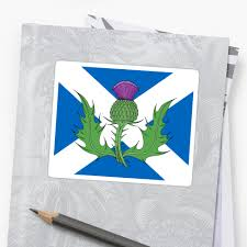scottish thistle u0026 saltire