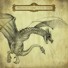scandinavian dragons dragon types