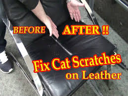 Leather Sofa Scratch Repair Kit Fix Cat Scratches On A Black Leather Chair