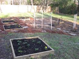 how to start a garden in your backyard start profitable backyard