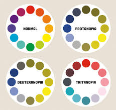 Color Blindness Psychology A Diagram Showing Colour Wheels As They Might Be Perceived By