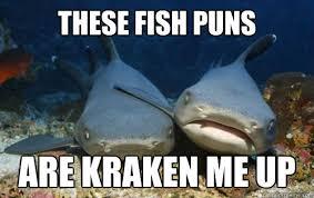 Funny Miami Dolphins Memes - fish puns punpedia