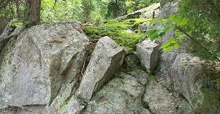 Rock Garden Society Potomac Valley Chapter American Rock Garden Society