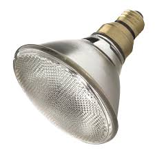 Par20 Halogen Flood Lights Shop Halogen Light Bulbs At Lowes Com