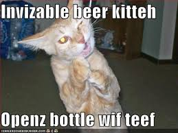 Invisible Cat Memes - funny pictures invisible beer opener cat1 invisible funny cat