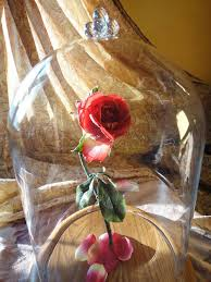 hands full of crafts beauty and the beast enchanted rose