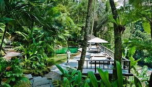 bali u0027s como shambhala takes wellness to new heights robbreport