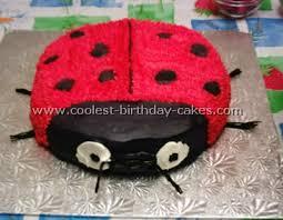 ladybug birthday cake coolest ladybug birthday cake photos and how to tips