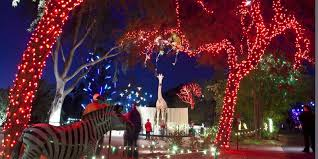 Phoenix Zoo Christmas Lights by Missed Phoenix Zoolights Your Last Chance To See It Is This Week