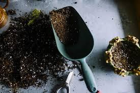 mushroom soil for sale mushroom compost delivery kutztown pa