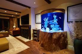 infinity aquarium design aquarium aquascape tropical ocean