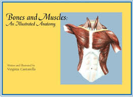 Anatomy And Physiology By Ross And Wilson Pdf Free Download Medical Books Free Bones And Muscles An Illustrated Anatomy By