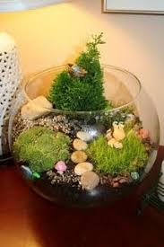 Indoor Garden Kit Miniature Garden Kit For Fairy Indoors Outdoors Plants By Janit