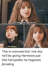 Hermione Granger Memes - the wiz ard s i m hermione granger and you are ron weasley