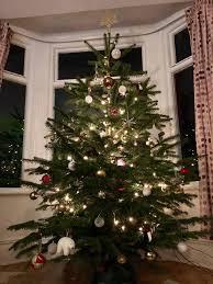 grappenhall christmas trees home facebook
