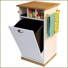 kitchen garbage can cabinet home design ideas kitchen garbage