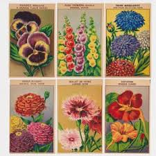 flower seed packets set 2 24 vintage flower seed packet labels