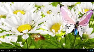 google images flower my flower 3d llwp google play store revenue u0026 download estimates