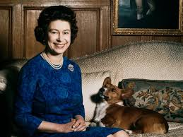 queen elizabeth dog queen elizabeth and her dogs little known facts about her corgis