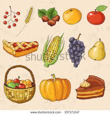 autumn collection elements autumn fruits vegetables stock vector