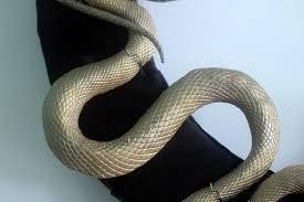 creepy gold snakes halloween wreath