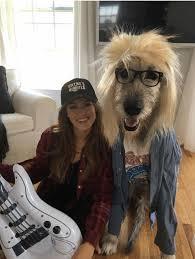 Horse Jockey Halloween Costume 19 Dog Owner Costumes Win Halloween