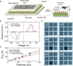 ferroelectric polarization induces electronic nonlinearity in ion
