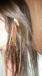feather extensions 15 best hair feathers images on feather extensions