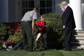 Donald Trump Houses Frank Giaccio Surprised By Trump As He Mows White House Lawn